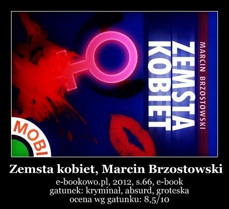 recenzjaopinia-zemsta-kobiet-marcin-brzostowski