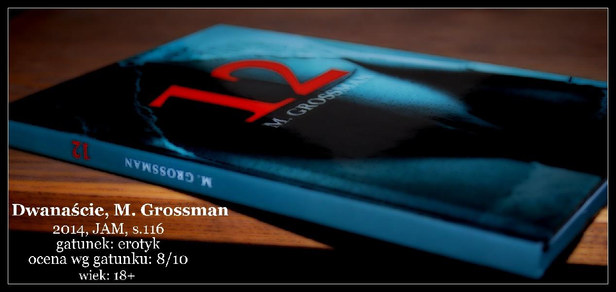 recenzjaopinia-dwanascie-m-grossman-czyli-odrobina-kontrowersji-w-dniu-dzisiejszym