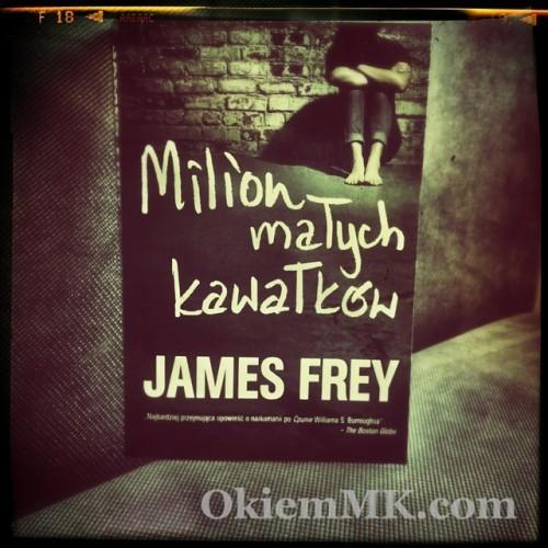 ksiazki-opinia-james-frey-miliona-malych-kawalkow-subiektywna-opowiesc-wracajacego-do-zdrowia-narkomana-i-alkoholika